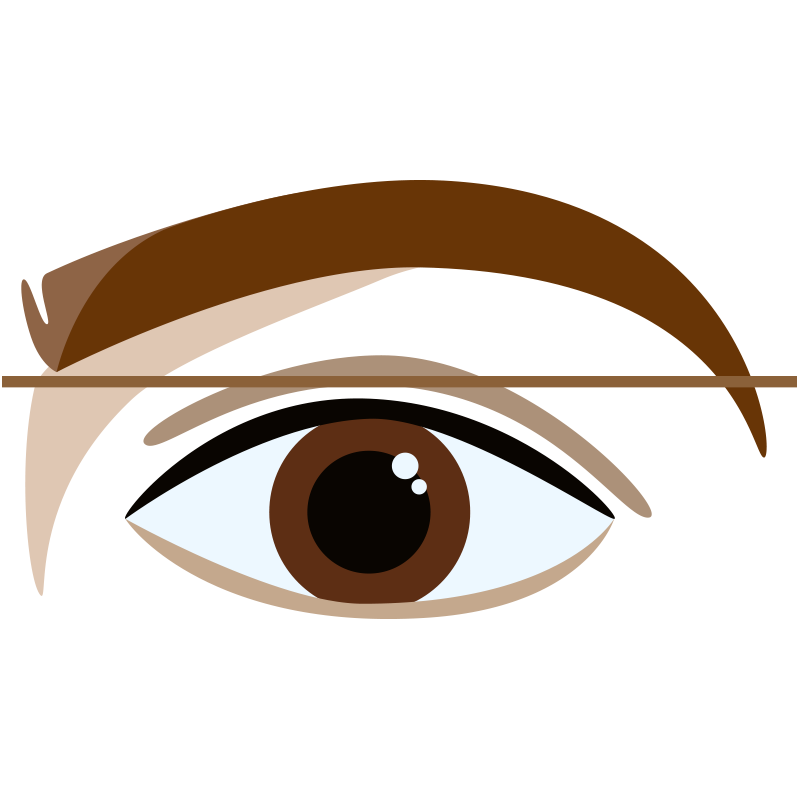 Over-Extended Brow (back)
